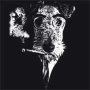 Groucho Barks